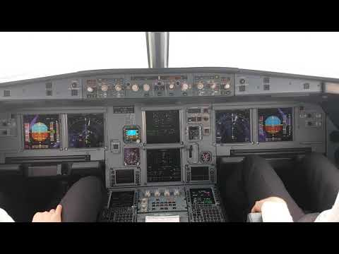 Airbus a320 Cockpit Landing at Rome Fiumicino Airport Runway 16L