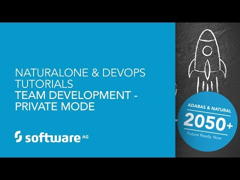 NaturalONE & DevOps Tutorials -Team Development - Private Mode
