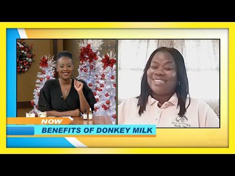 Benefits of Donkey Milk   TVJ Smile Jamaica