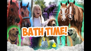 Giving ALL MY PETS A BATH in One Video!