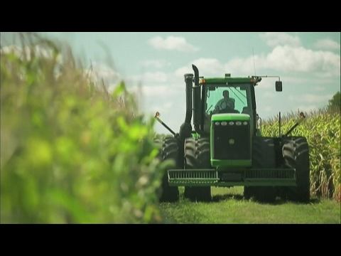 Organic farming in France: Green is the new black