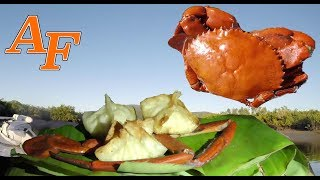 Mud Crab   Catch and Cook   Crab Rangoon Recipe EP.400