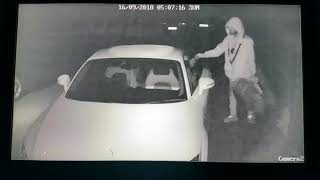 Audi Car Thief with Dog Oldbury B69 on 160918 5AM