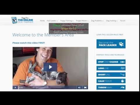 doggy-dan's-online-dog-trainer-review-–-does-the-course-work?
