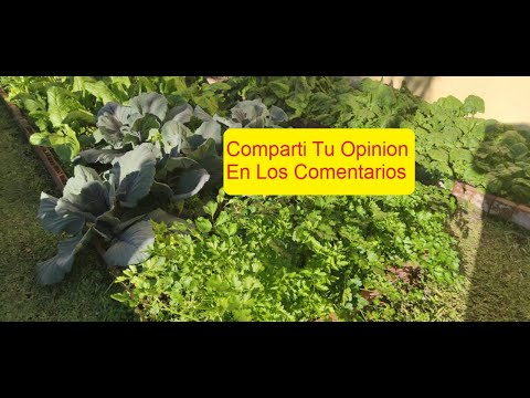 Download CONTAMINACION EN LOBOS Y A NIVEL MUNDIAL