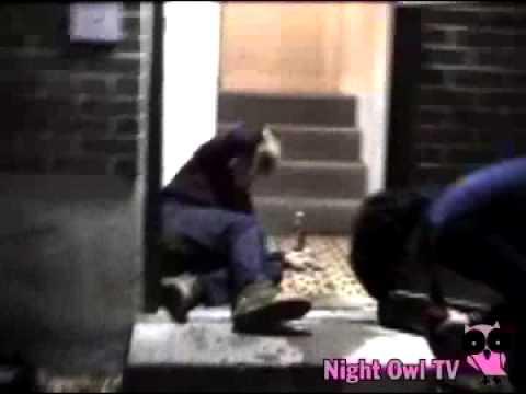 Night Owl TV