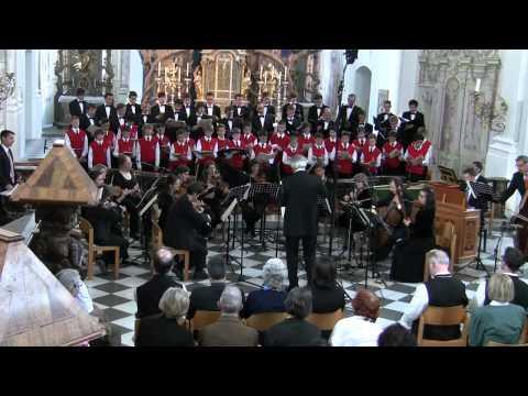 Halleluja, Händel, Wiltener Sängerknaben, Academia Jacobus Stainer, Johannes Stecher