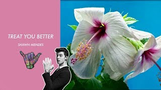 Shawn Mendes- Treat you better (Ashworth Remix) -Music Video