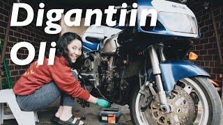 ISTRI IDAMAN ANAK MOTOR - #dimvlog 264