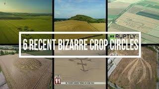 6 Recent Bizarre Crop Circles