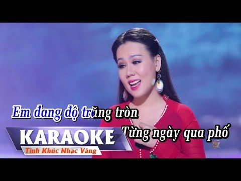 Đắp Mộ Cuộc Tình (KARAOKE) Lưu Ánh Loan