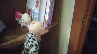 Приключения 2 мини фильм 1 сезон Детский канал про животных