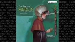 Und die sieben Schritte zur Weisheit Die Merlin Saga #2 Fantasy Hörbuch von T  A  Barron
