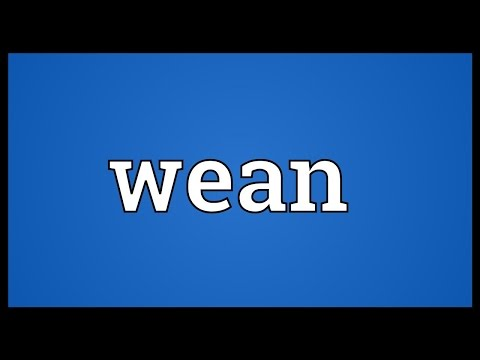 Wean Meaning