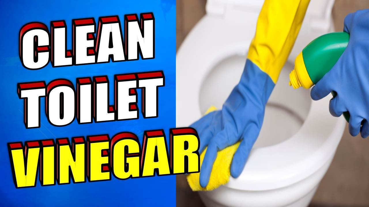 How To Clean A Toilet With Vinegar Youtube