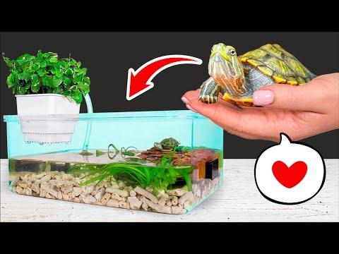 Домик для черепахи сухопутной своими руками схема как сделать