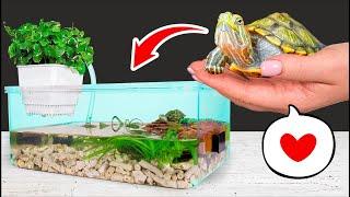 як зробити тераріум для красноухой черепахи