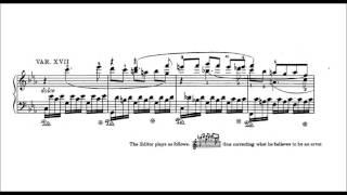 beethoven 32 variations in c minor woo 80 andor foldes