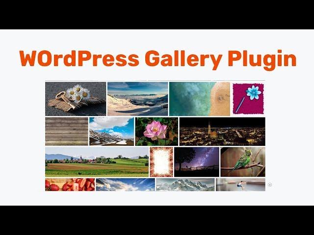WordPress Gallery Plugin 2018 - Easy Image Gallery – Create a Lightbox Gallery on WordPress website