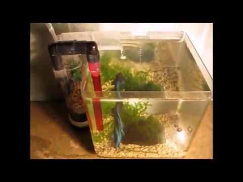 Самодельный мини фильтр для аквариума / Mini External Aquarium Filter