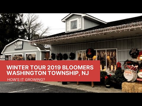 Winter Tour 2019 Bloomers Home & Garden Center, Washington Township, NJ 🎄❄️ | How's It Growing?