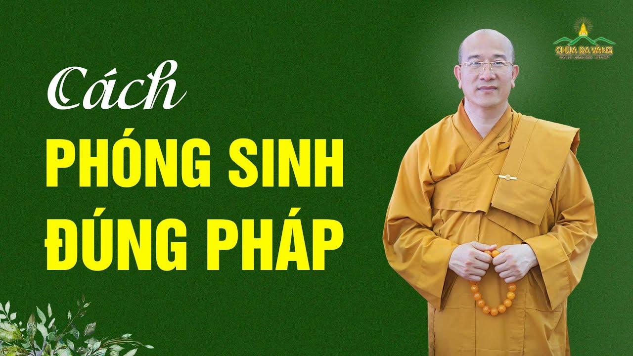 Cách Phóng Sinh Cho Đúng | Thầy Thích Trúc Thái Minh