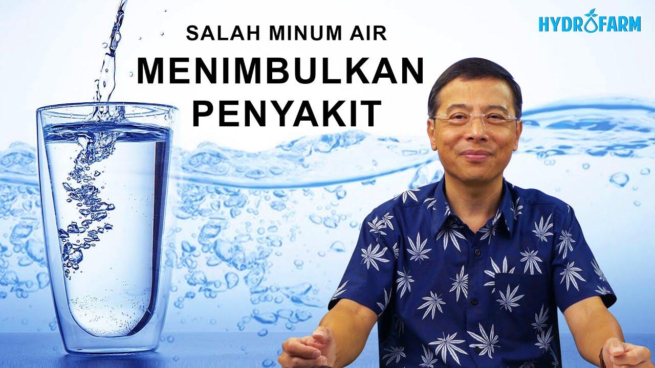 Terapi Minum Air Sembukan Penyakit Youtube