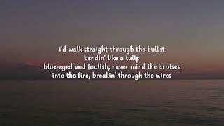 Download Alan Walker   Diamond Heart Lyrics ft  Sophia Somajo
