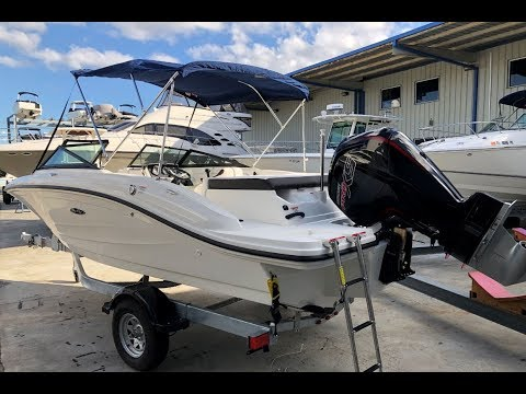 2019 Sea Ray SPX 190 Outboard Boat For Sale at MarineMax Clearwater