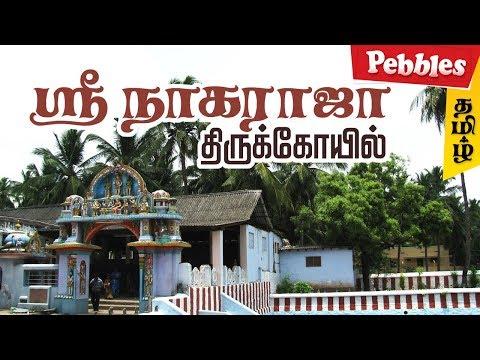 Sri Nagaraja Swami Temple Nagercoil Tamilnadu | History of Nagaraja Temple in Nagercoil