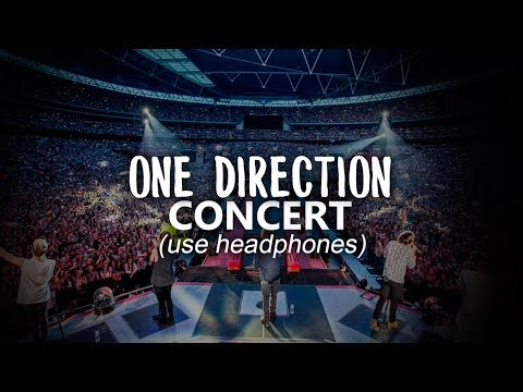 Watch this if you haven't been to a ONE DIRECTION concert (USE HEADPHONES)
