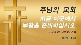 2016년 4월 3일: 지금 이곳에서 부활을 준비하십시오