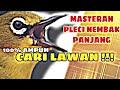 Masteran Pleci Nembak Panjang Fighter Cari Lawan  Mp3 - Mp4 Download
