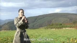 牧歌 /   手嶌 葵 thumbnail