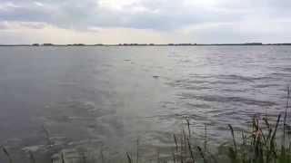 Озеро Южное оно же Муслимовское, подход к озеру с одной стороны через камыши
