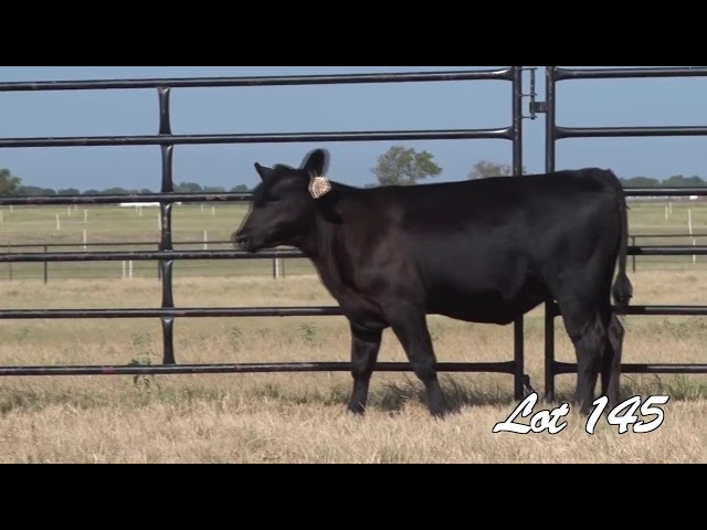 Pollard Farms Lot 145