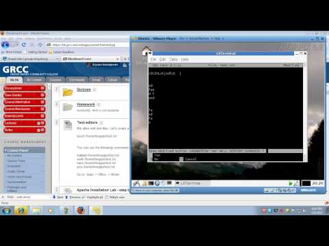 Web Server Admin: Lecture 1 Introduction to Apache and Web Servers CO246