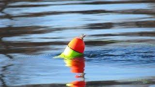 ЛОВЛЯ НА КЕМБРИК на беспредельном Енисее Рыбалка осенью на хариуса СИБИРИЯ
