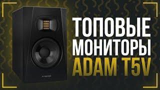 тОПОВЫЕ БЮДЖЕТНЫЕ МОНИТОРЫ - ОБЗОР ADAM T5V