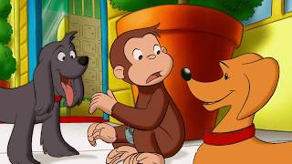 Curious George 🐵 George's Amazon Adventure🐵Full Episode 🐵 HD 🐵 Cartoons For Children