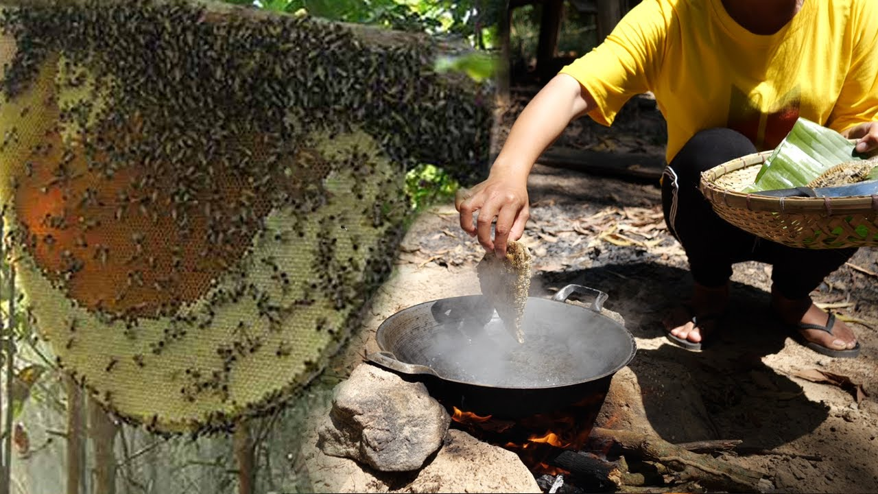 Primitive Cooking baby Bee Recipe - Nest Bee Cooking Skill