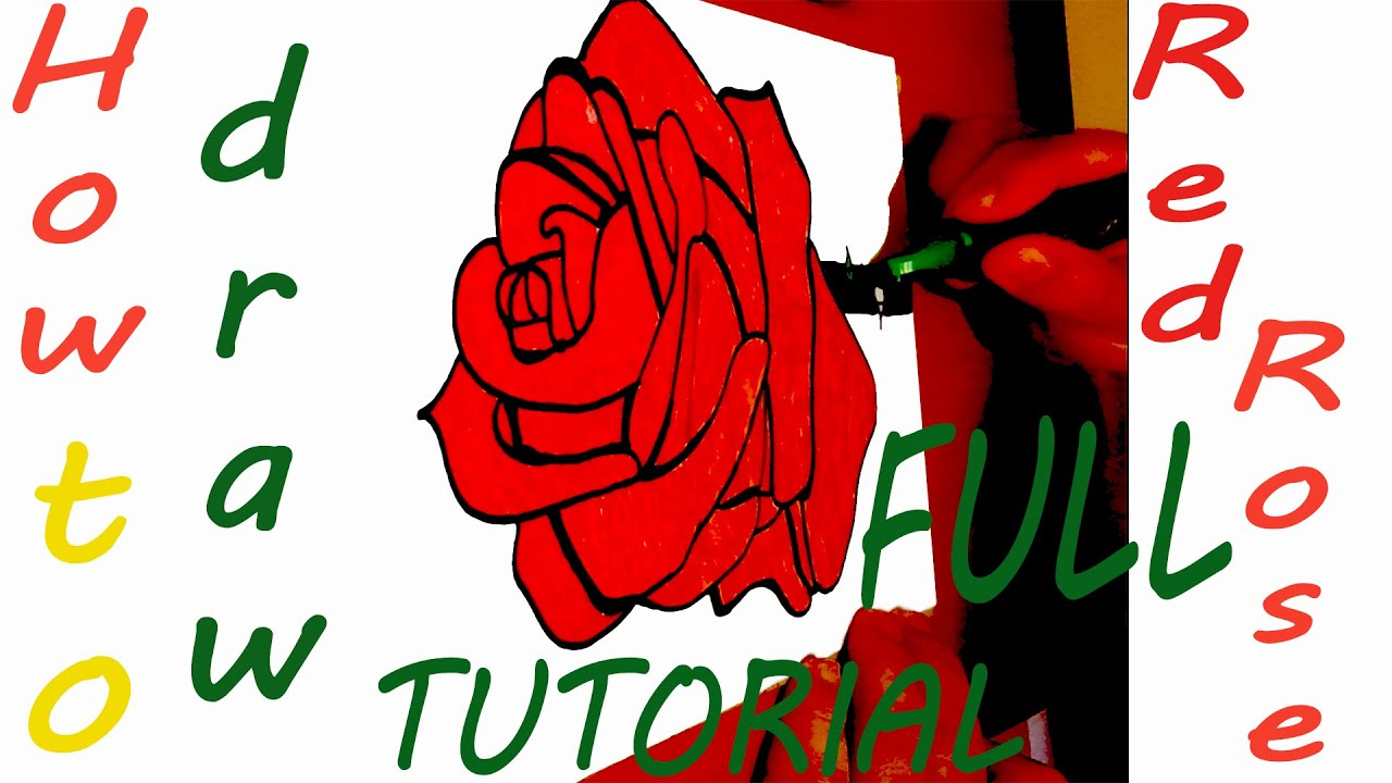 Drawing tutorial full how to draw a rose step by step for for How to draw a rose step by step for beginners