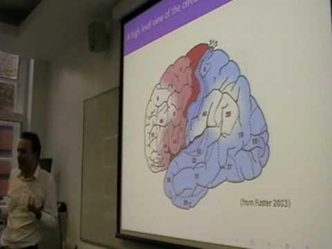 Machine Super Intelligence - Shane Legg on AI [UKH+] (9/12)