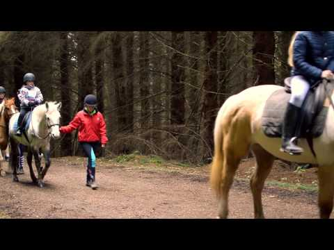 Grand Day Out: Horse Riding at The Paddocks