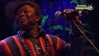 SIERRA LEONE'S REFUGEES ALL STARS live @ Main Stage 2015