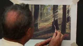 How to paint sunlight beaming through a forest