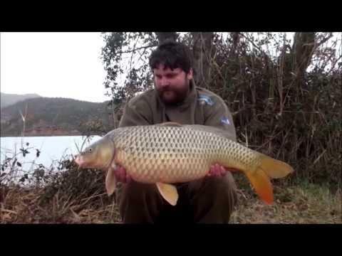 Ebro Fishing Dreams - Winter Wishes