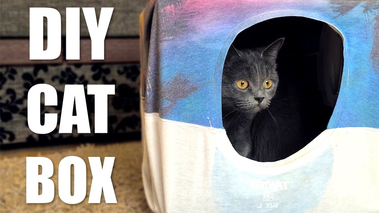 Download DIY Cat Tent from T-Shirt and Box 😻