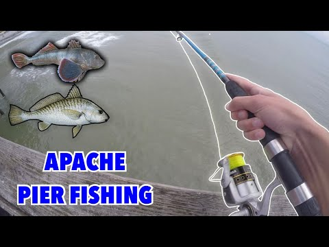 FISHING OFF OF THE APACHE PIER!!! (MYRTLE BEACH SC)