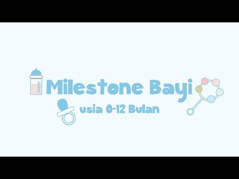 Milestone Bayi Usia 0-12 Bulan